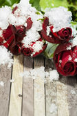 Roses on the table — Stock Photo