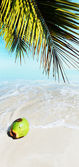 Tropical beach. Vertical panoramic composition. — Stock Photo