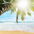 Stock Photo: Tropical beach. Square composition.