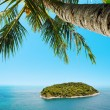 Aerial view of the tropical island. Vertical composition. — Stock Photo