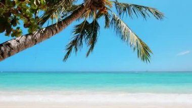 Beautiful beach — Stock Video