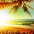 Stock Photo: Sunset over the tropical beach. Vertical crop.