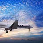 composición panorámica del pequeño avión privado en un cielo al atardecer — Foto de Stock   #24571989
