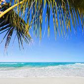Tropical Playa de arena blanca en la mañana. composición cuadrada. — Foto de Stock