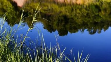 Lagoa bonita — Vídeo stock