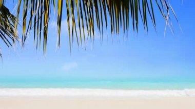 Witte zand — Stockvideo