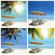 Tropical beach set — Stock Photo #25035595