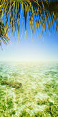 Tropical sea. Vertical panoramic composition. — Stock Photo