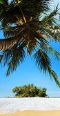 在阳光灿烂的日子中的热带岛屿。全景垂直组成. — 图库照片