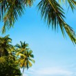 Idyllic tropical beach in sunny day. Vertical panorama. - Stock Photo
