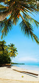Idyllic tropical beach in sunny day. Vertical panorama. — Stock Photo