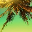 Stock Photo: Tropical sunset. Vertical panorama.