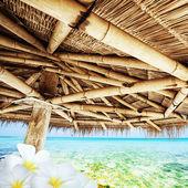 Idílica escena tropical — Foto de Stock