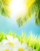 热带的概念。垂直组成. — 图库照片