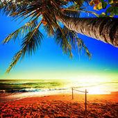 令人惊叹的热带海滩风景如画的看法。方形组成. — 图库照片