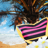Tropical vacation. Square composition. — Stock Photo