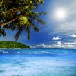 Tropical Heaven — Foto de stock #40946475