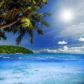 Tropiska himlen — Stockfoto