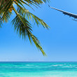 Tropical vacation concept — Stock Photo #43552503