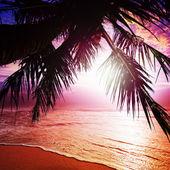Sunset in Paradise — Stock Photo