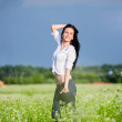 Beautiful brunette poses among green summer field — Stock Photo #28230829