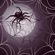 Moonlit Spider and Web — Stock Vector