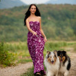Young woman taking two collies on a walk — Stock Photo