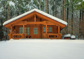 Wooden cottage in snowy forest — Stock fotografie