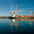 Cargo sea port. Sea cargo cranes. Sea. — Stock Photo #18281585