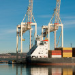 Cargo sea port. Sea cargo cranes. Sea. — Stock Photo #18281867