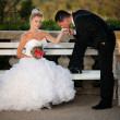 Bride and groom in a park outdoor - Married couple  — Foto de Stock