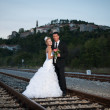 Bride and groom on a railway at dusk — Stock fotografie