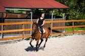 Piękna młoda blond kobieta na koniu — Zdjęcie stockowe