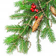 Christmas decorations on a fir tree — Stock Photo