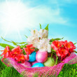 Easter eggs decorated with flowers — Stock Photo