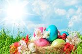 Paskalya yumurta çiçeklerle dekore edilmiştir — Stok fotoğraf