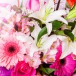 Beautiful flower background — Stock Photo