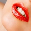 Beautiful sexy red lips — Stock Photo #23698511