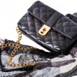 Women&#039;s Accessories: bag and scarf - Stock Photo