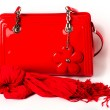 Women's Accessories: red bag and scarf — Stock Photo #23951845