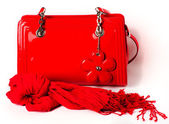 Women's Accessories: red bag and scarf — Stockfoto