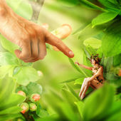 Concept of and magical fairies — Stock Photo