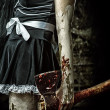 Evil woman holding a bloody ax — Stock Photo #29437087