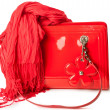 Red patent leather bag and bamboo scarf — Stock Photo #30200957