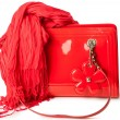 Red patent leather bag and bamboo scarf — Stock Photo