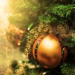 Golden Christmas ball on  branches of fir tree — Stock Photo