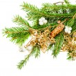 Green christmas tree branch with decorations — Foto Stock