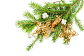 Green christmas tree branch with decorations — Stock Photo