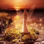Fantasy magic world. Pixie and sunset — Stock Photo