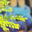 Stock Video: Green leaves over blurred graffiti background